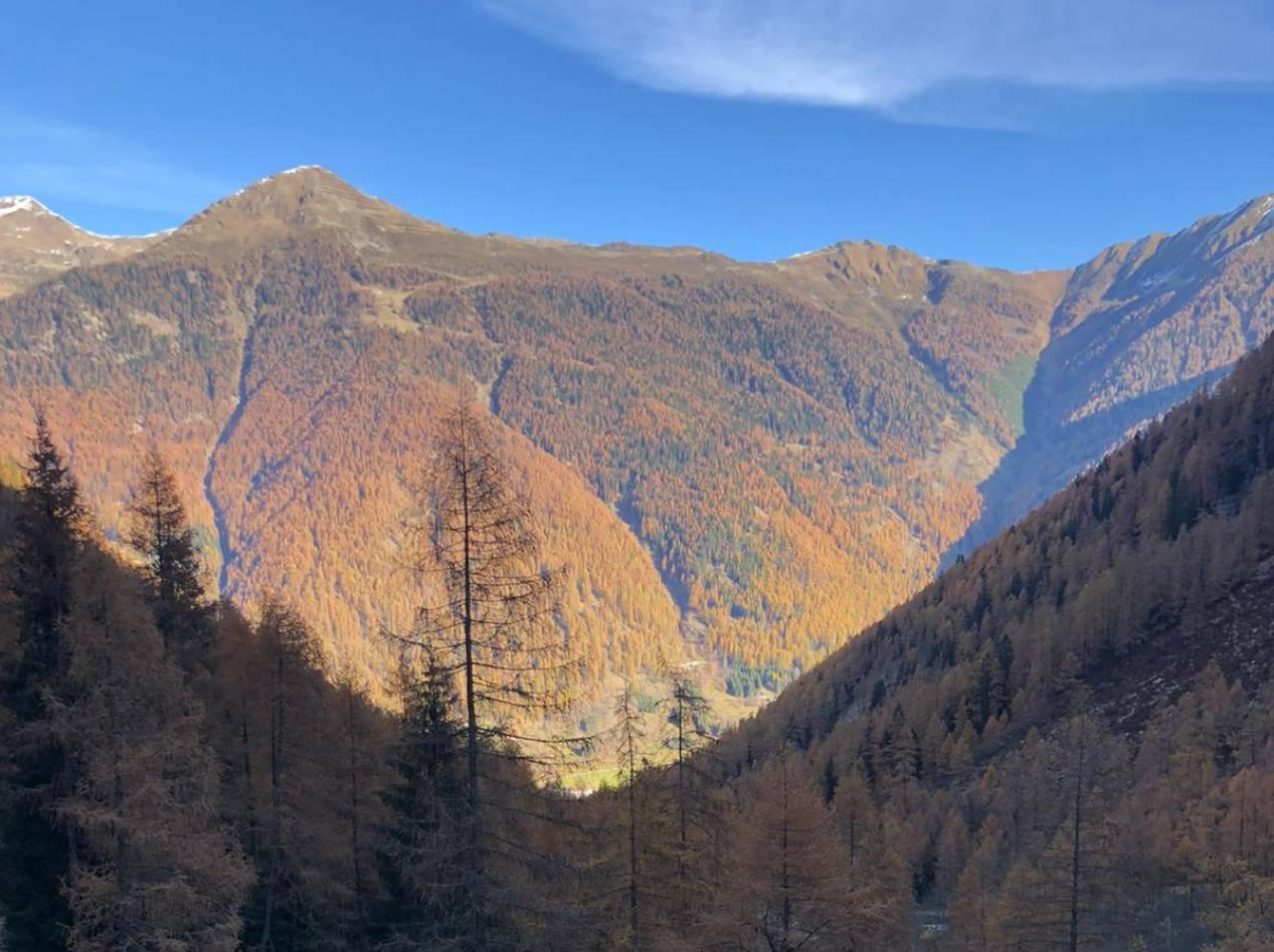 Autunno in Val di Non - Dolomiti Walking Hotel