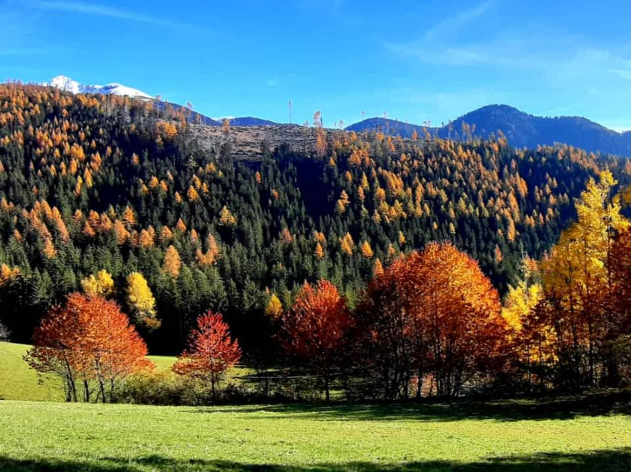Autunno in Val di Fassa - Dolomiti Walking Hotel